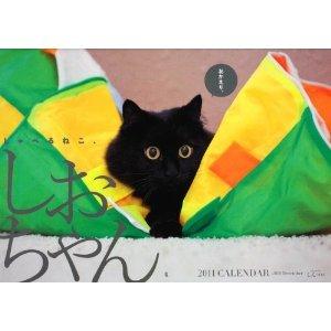 しおちゃんカレンダー2011.jpg